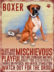 Boxer Dog large Steel Sign  400mm x 300mm  (og)